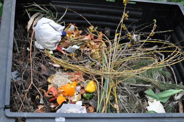 Hrana v zabojnikih za smeti2