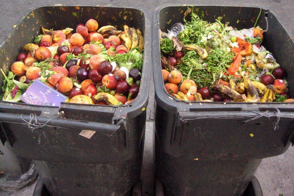 food-waste365