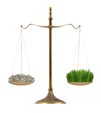 EH money vs grass on scales